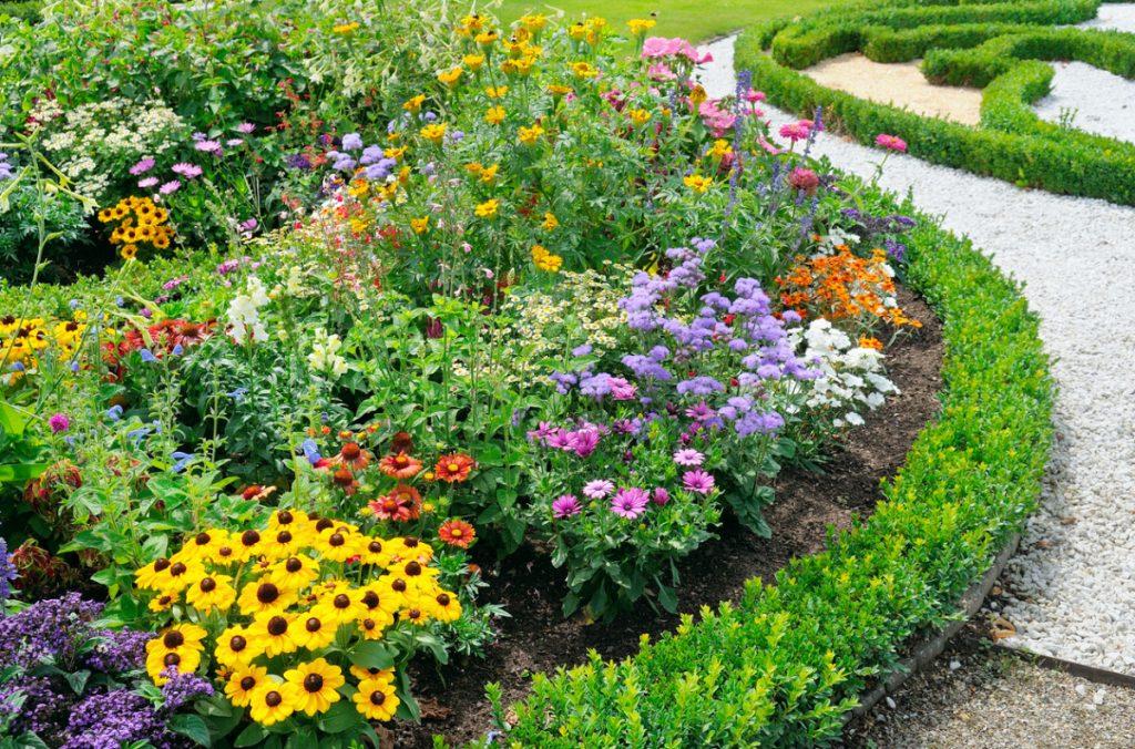 amenagement jardin conseils