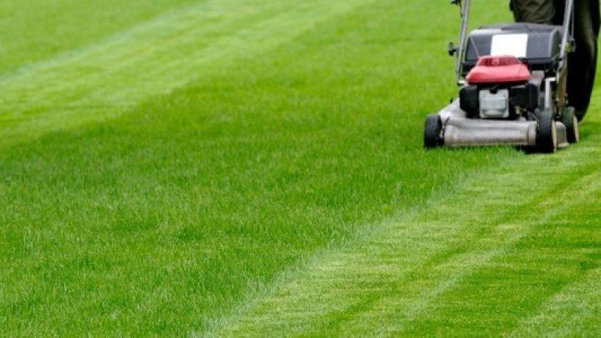 tondre pelouse prix